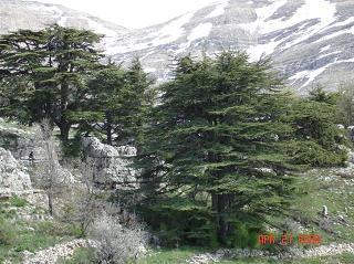 Lebanon, 6000 Years of Pride